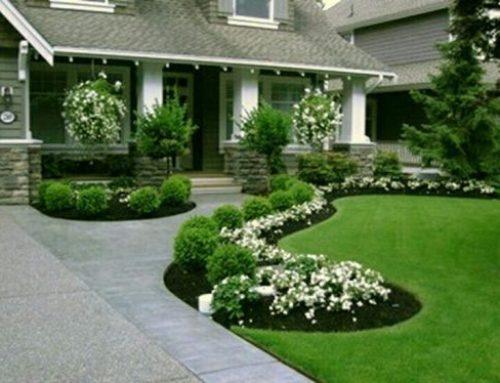 شركة تنسيق حدائق ام القيوين |0507371738